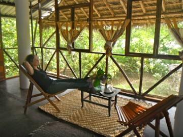 Chocolate-Jungle-Lodge