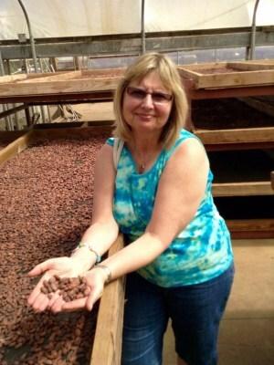 Hawaii-cocoa-beans