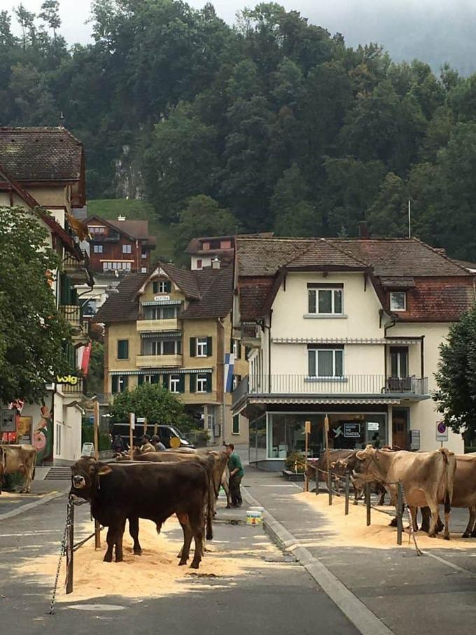 weggis-switzerland