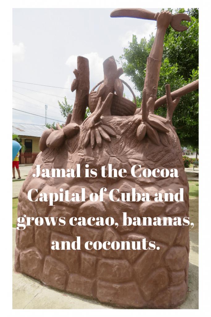 cuban-cacao